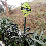 cannondale sign